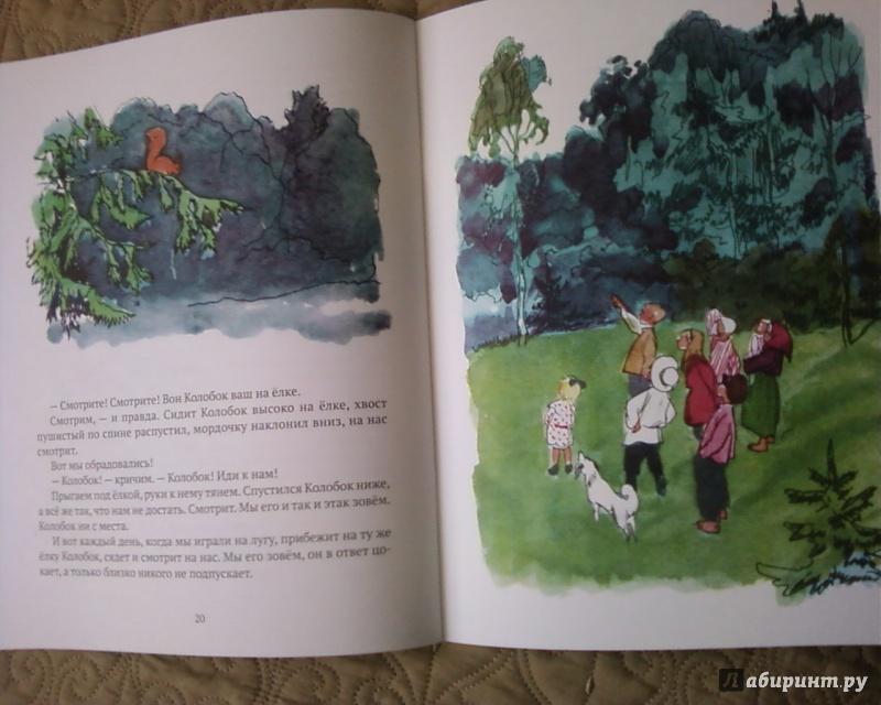 Иллюстрация 38 из 55 для Бабушкин колобок - Елена Верейская | Лабиринт - книги. Источник: Родионова  Надежда