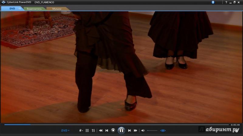 Иллюстрация 1 из 5 для Фламенко (DVD) - Михаил Погосов | Лабиринт - видео. Источник: Соня-А