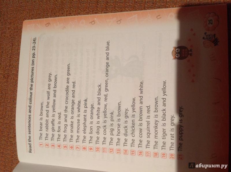 Иллюстрация 1 из 5 для Английский язык. 4 класс - Ольга Конобевская | Лабиринт - книги. Источник: Кузьменко  Наталья Викторовна