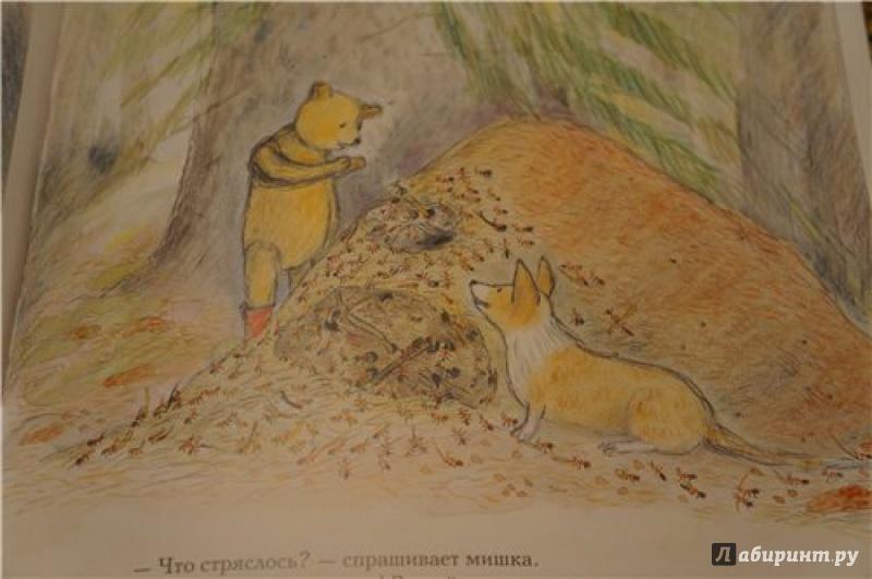 Иллюстрация 17 из 45 для Весна мишки Бруно - Гунилла Ингвес | Лабиринт - книги. Источник: В  Виктория