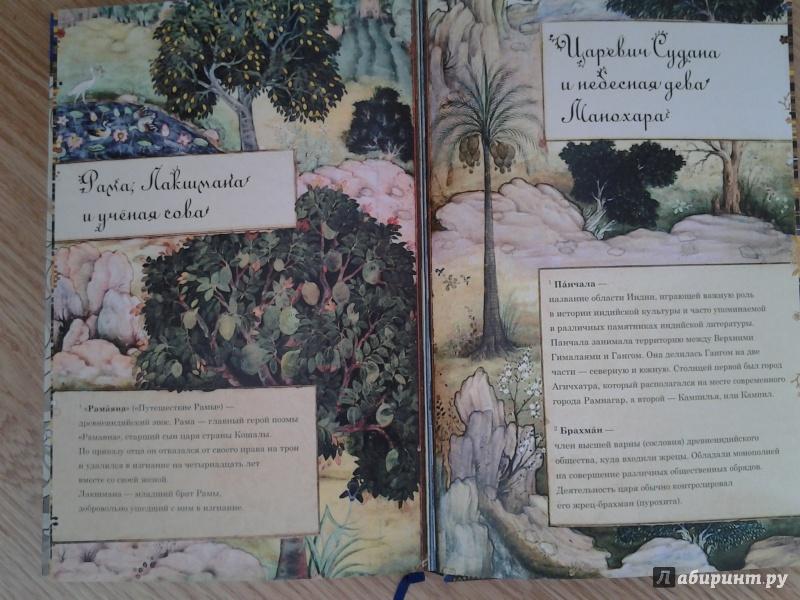Иллюстрация 24 из 67 для Рама, Лакшмана и учёная сова. Индийские народные сказки   Лабиринт - книги. Источник: Olga