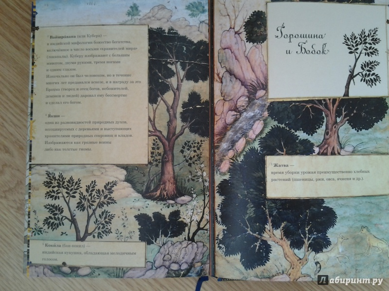 Иллюстрация 25 из 67 для Рама, Лакшмана и учёная сова. Индийские народные сказки | Лабиринт - книги. Источник: Olga