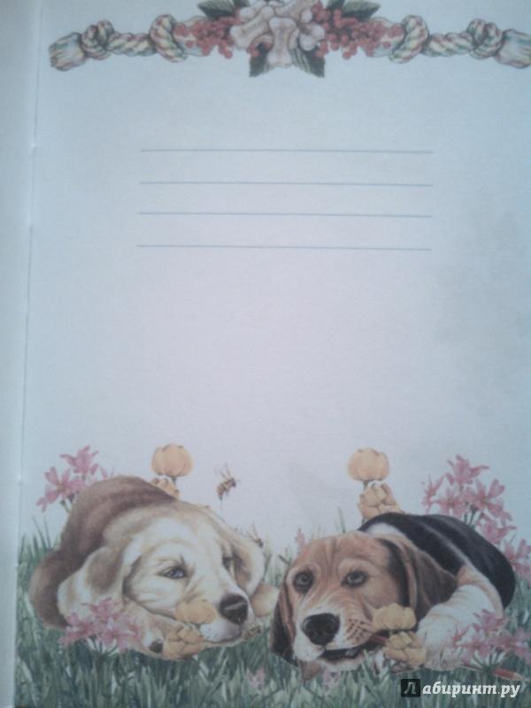 Иллюстрация 2 из 16 для Блокнот. Собаки А6 | Лабиринт - канцтовы. Источник: Грицук  Вероника