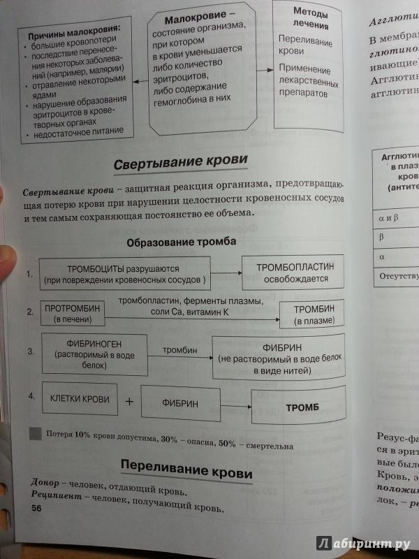 """Рецензии покупателей на """""""