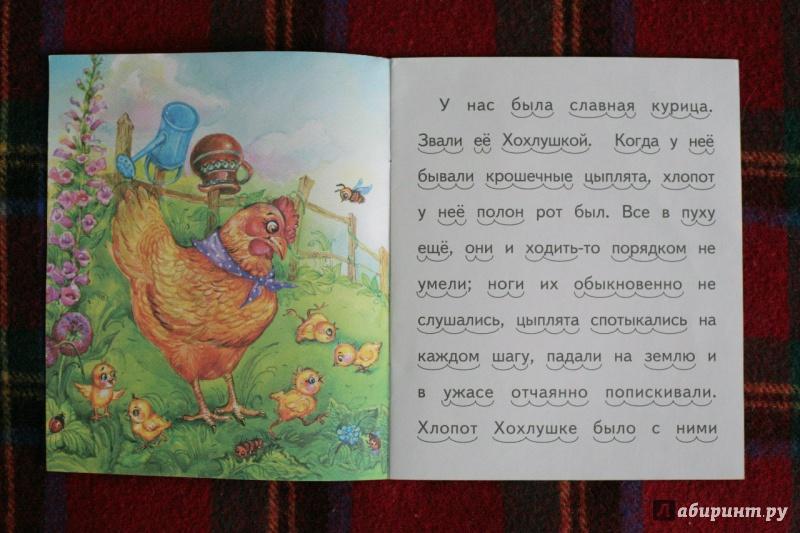 Иллюстрация 10 из 20 для То, чего котик не ожидал - Александр Федоров-Давыдов | Лабиринт - книги. Источник: дважды