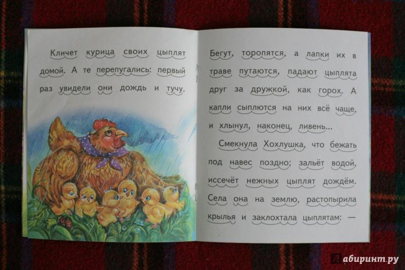 Иллюстрация 12 из 20 для То, чего котик не ожидал - Александр Федоров-Давыдов | Лабиринт - книги. Источник: дважды