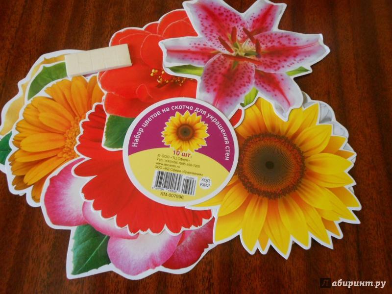 Иллюстрация 1 из 16 для Набор цветов на скотче для украшения стен (КМ-7996) | Лабиринт - игрушки. Источник: Леан