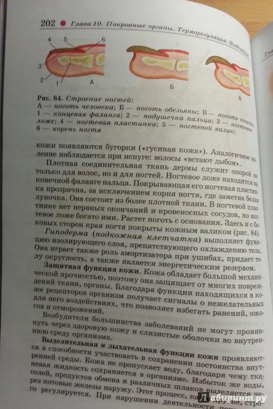 Биология 8 класс учебник читать колесов маш беляев гдз