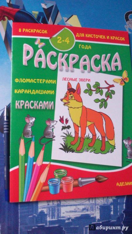Иллюстрация 1 из 8 для Раскраска малышам. Лесные звери. 2-4 г ода | Лабиринт - книги. Источник: Арсланбекова  Ирина Петровна