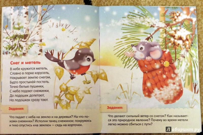 Иллюстрация 5 из 37 для О явлениях природы - Евгения Кокурина   Лабиринт - книги. Источник: Террил