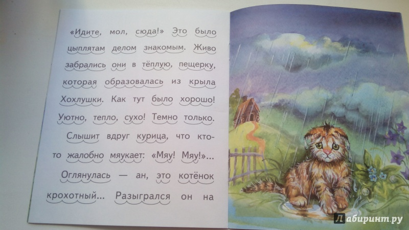 Иллюстрация 19 из 20 для То, чего котик не ожидал - Александр Федоров-Давыдов | Лабиринт - книги. Источник: Косова  мария