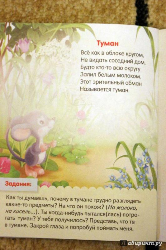 Иллюстрация 8 из 37 для О явлениях природы - Евгения Кокурина | Лабиринт - книги. Источник: Террил