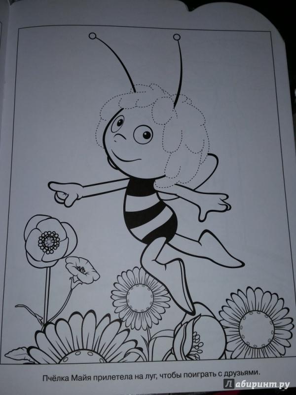 Иллюстрация 1 из 7 для Умная раскраска. Пчёлка Майя (№14170) | Лабиринт - книги. Источник: Ступак  Ирина Максимовна
