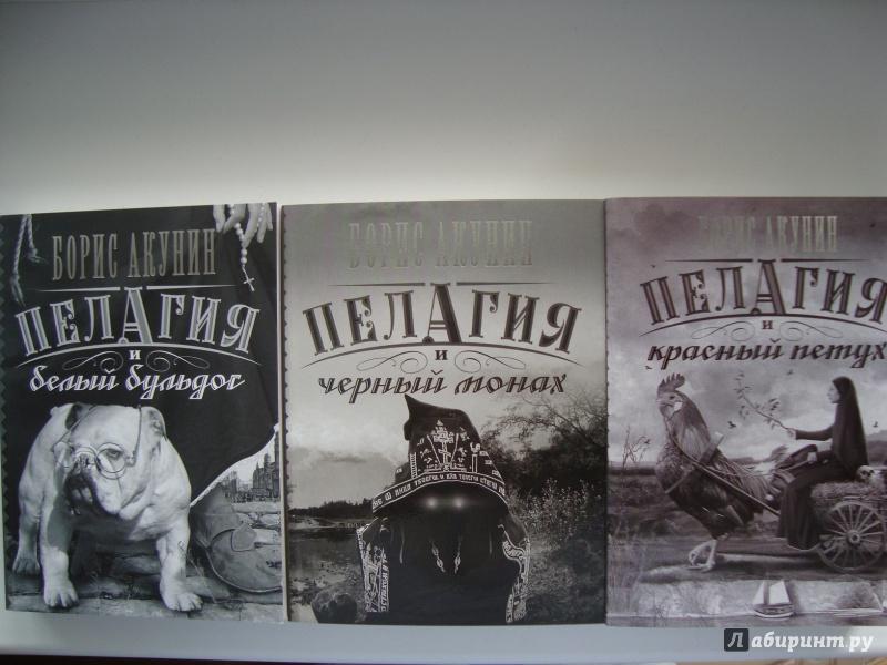 Иллюстрация 1 из 27 для Пелагия и черный монах - Борис Акунин | Лабиринт - книги. Источник: Ярославцева  Марина Викторовна