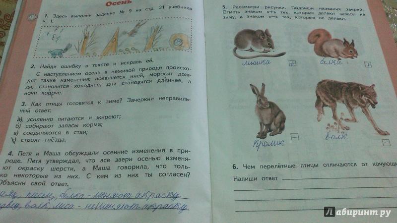 3 решебник окружающий класс рабочая мир ивченкова