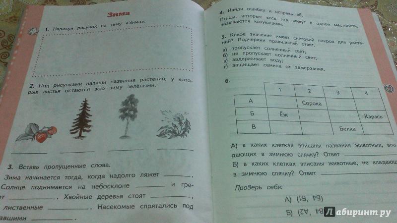окружающий мир 2 класс рабочая тетрадь решебник ивченкова 2 часть ответы