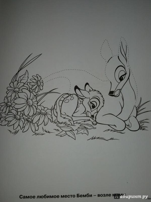 Иллюстрация 1 из 2 для Умная раскраска. Бемби (№14105) | Лабиринт - книги. Источник: Ступак  Ирина Максимовна