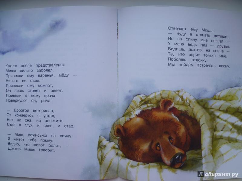 книги о медведях шатунах данной
