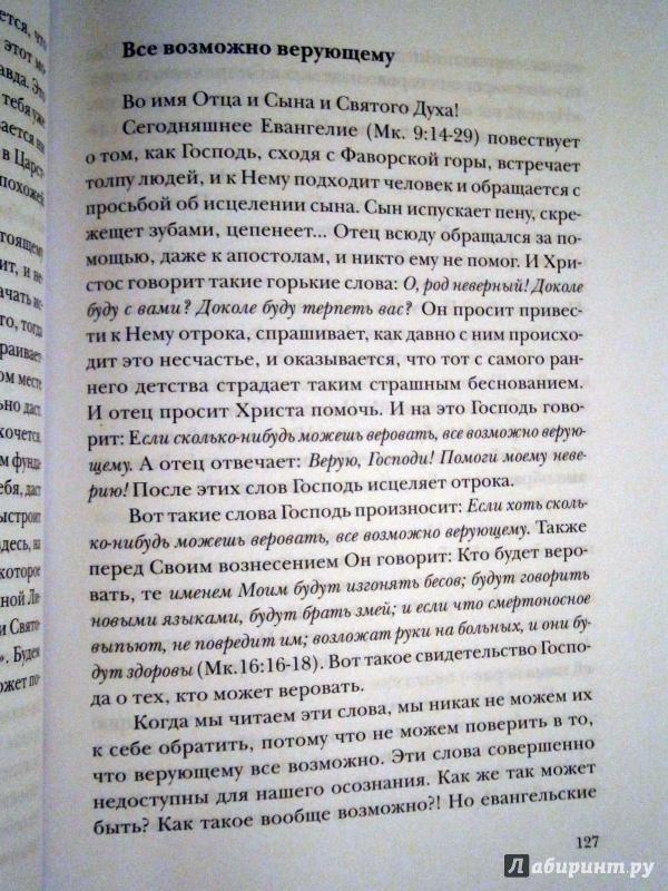 Иллюстрация 13 из 16 для Что я хочу от Церкви. О христианстве и духовном потреблении - Алексей Протоиерей   Лабиринт - книги. Источник: D8  _
