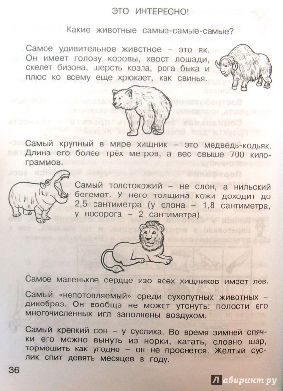 Решебник По Проектной Деятельности 2 Класс Р.с.сизова