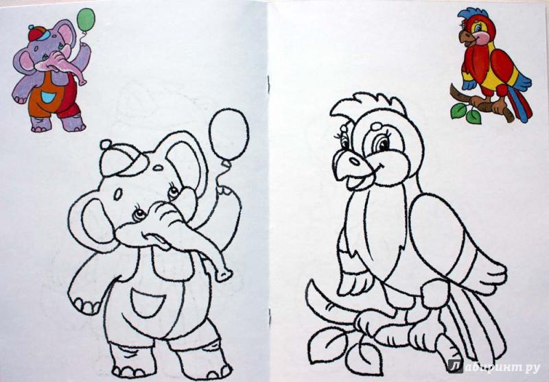 Иллюстрация 1 из 11 для Раскраска малышам. Попугай. 2-4 года | Лабиринт - книги. Источник: Сидоренко  Сергей
