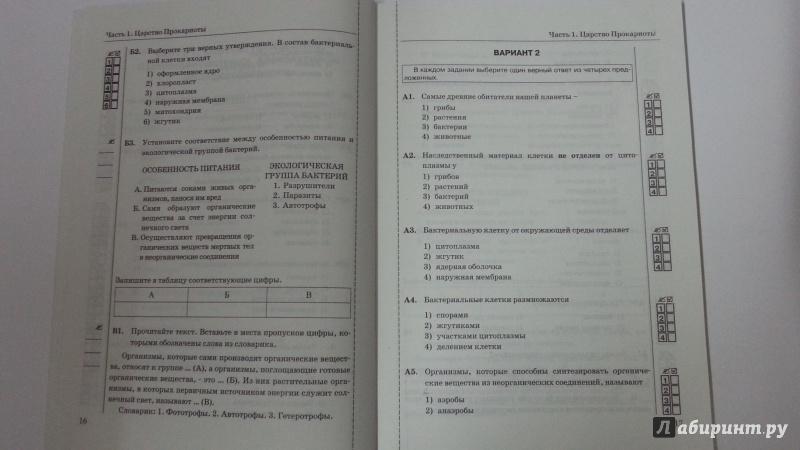 Биология тесты 8 класс ответы сонин