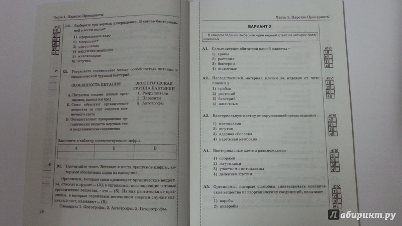 Тест по биологии 8 класс по учебнику сонина