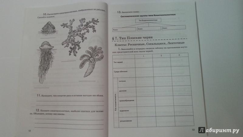 Биология 7 класс рабочая тетрадь в.в латюшин