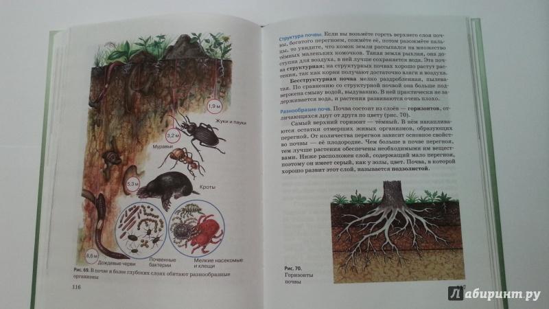 Решебник Природоведение 5 Класс Издательство В.м.пакулова Иванова Учебник