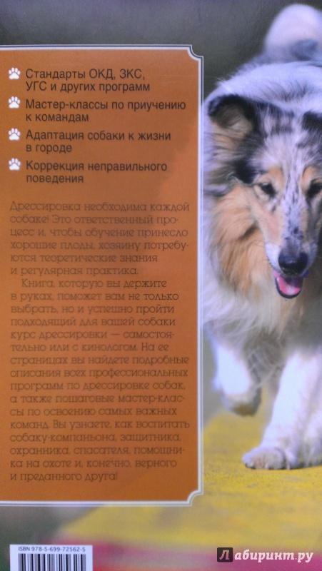 Иллюстрация 2 из 13 для Все о дрессировке собак - Арсений Нестеров | Лабиринт - книги. Источник: Подмосковная панда