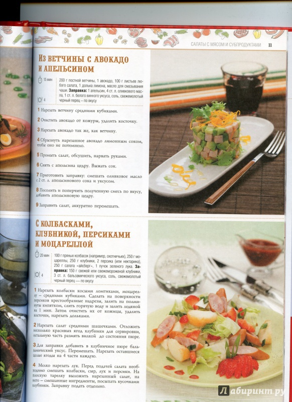 Иллюстрация 7 из 11 для 100 лучших рецептов праздничных салатов | Лабиринт - книги. Источник: boalinfo