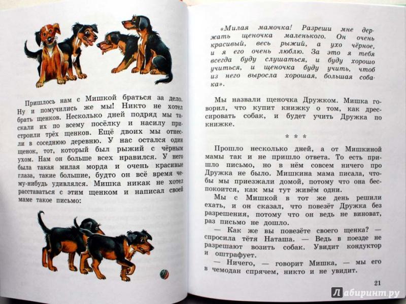Иллюстрация 32 из 43 для Мишкина каша - Николай Носов   Лабиринт - книги. Источник: Сидоренко  Сергей