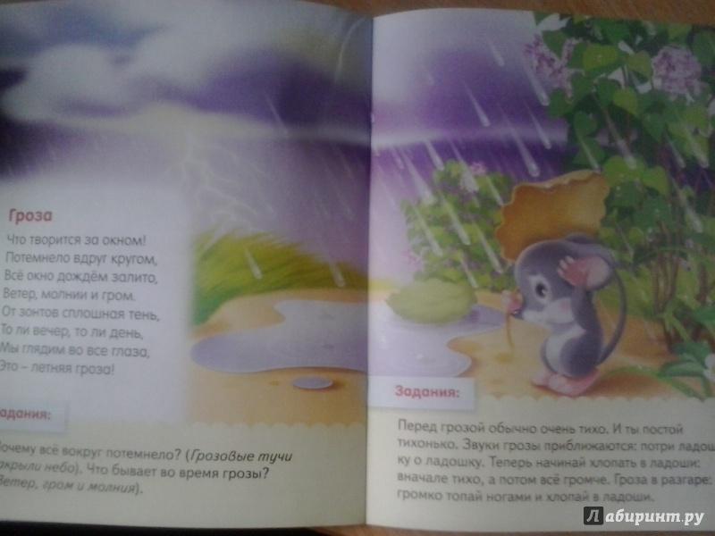 Иллюстрация 34 из 37 для О явлениях природы - Евгения Кокурина   Лабиринт - книги. Источник: Сосновская  Юлия Юрьевна
