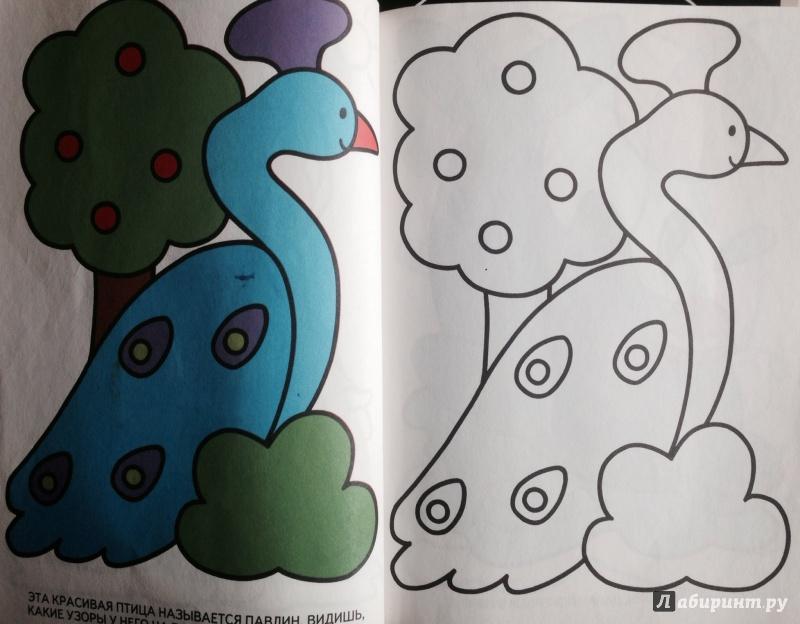 Иллюстрация 1 из 7 для Лучшие раскраски   Лабиринт - книги. Источник: Крюкова  Евгения Сергеевна