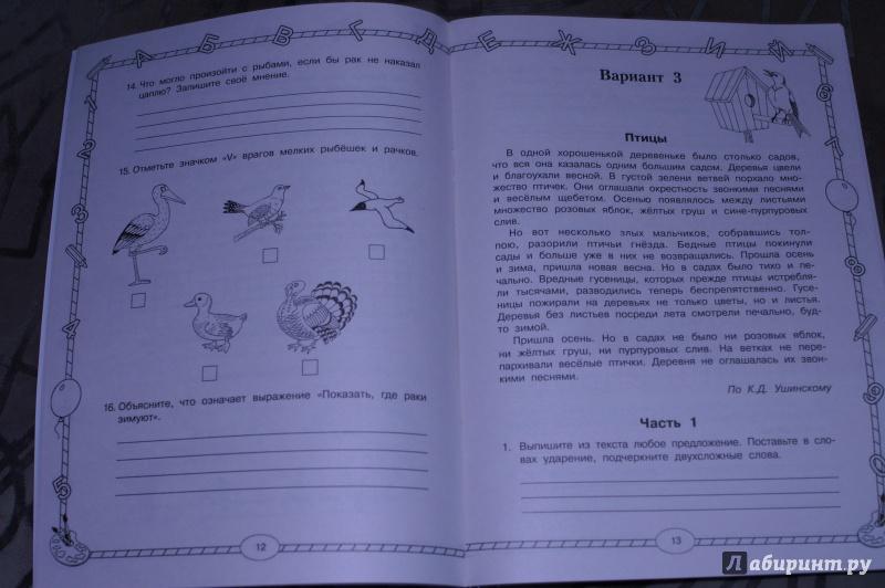Иллюстрация 1 из 23 для Итоговые комплексные работы. 1 класс. ФГОС - Узорова, Нефедова | Лабиринт - книги. Источник: Тимур и его команда