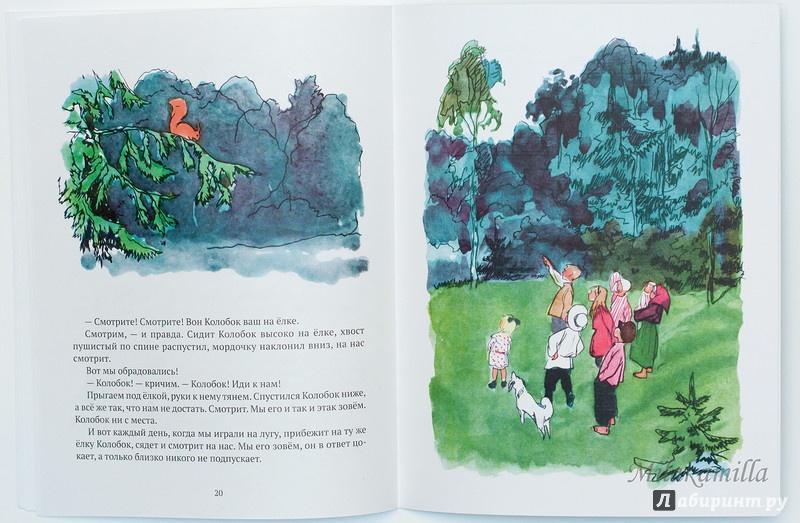 Иллюстрация 51 из 55 для Бабушкин колобок - Елена Верейская | Лабиринт - книги. Источник: Букландия