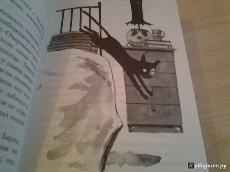Иллюстрация 9 из 27 для Быть котом - Мэтт Хейг | Лабиринт - книги. Источник: КошкаПолосатая