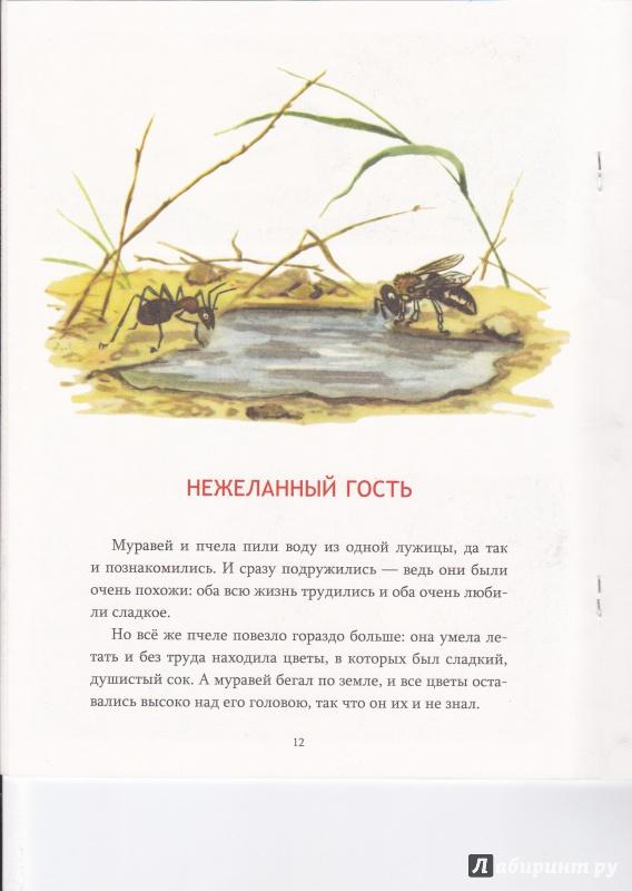 Иллюстрация 55 из 111 для Сказка о страхе - Екатерина Серова | Лабиринт - книги. Источник: Егорова  Наталья