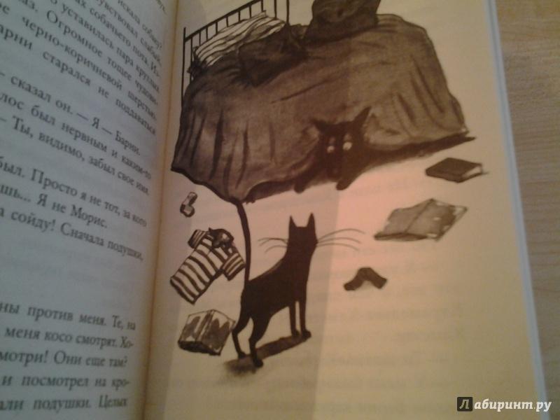 Иллюстрация 11 из 27 для Быть котом - Мэтт Хейг | Лабиринт - книги. Источник: КошкаПолосатая