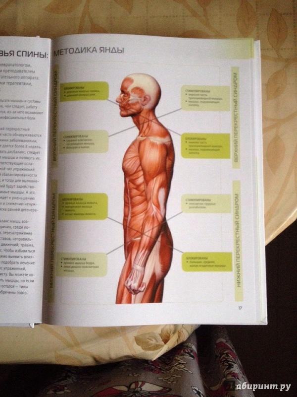 голая на анатомии-иь1
