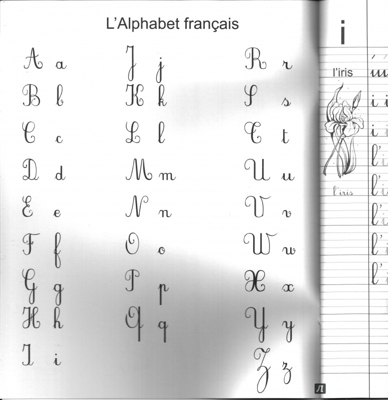 Иллюстрация 1 из 15 для Французский язык. Прописи - Бандикян, Тухулова | Лабиринт - книги. Источник: Eugenie