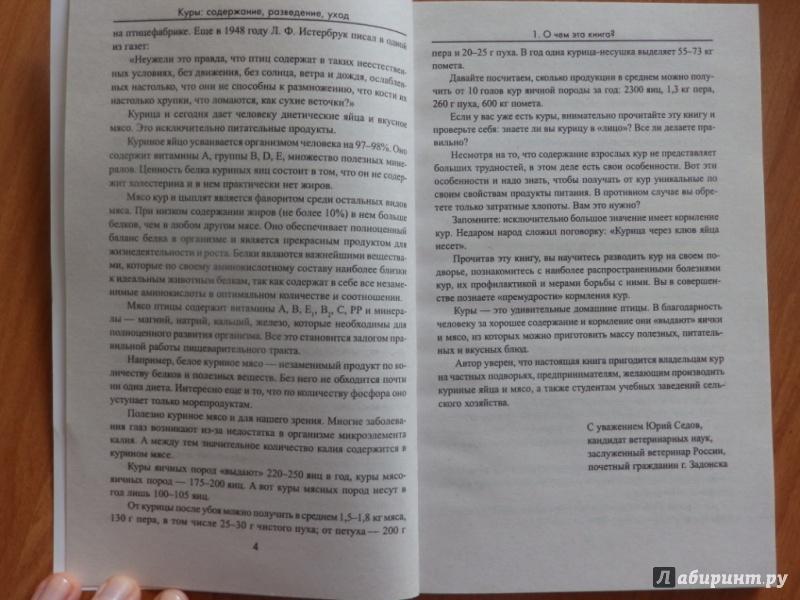 Иллюстрация 5 из 13 для Куры. Содержание, разведение, уход - Юрий Седов | Лабиринт - книги. Источник: товарищ маузер