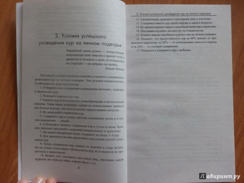 Иллюстрация 6 из 13 для Куры. Содержание, разведение, уход - Юрий Седов | Лабиринт - книги. Источник: товарищ маузер