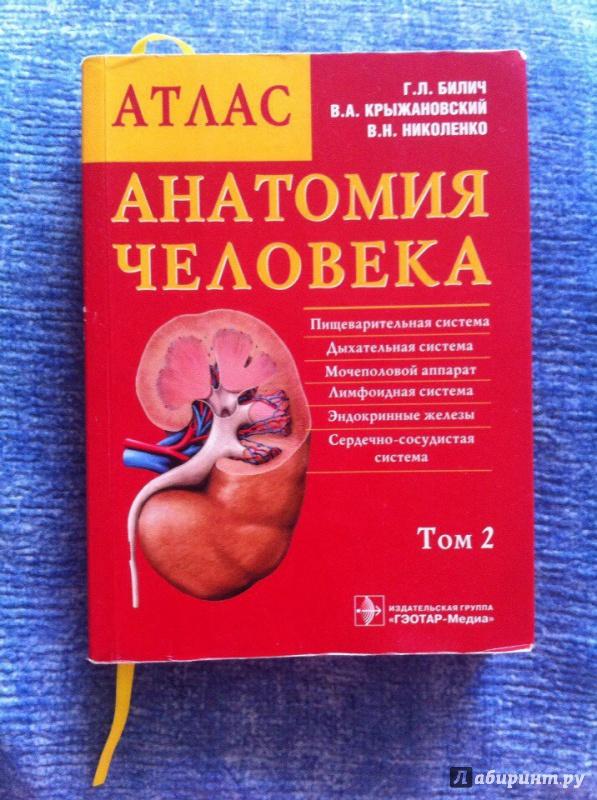атлас билича по анатомии 1 том купить спб убада
