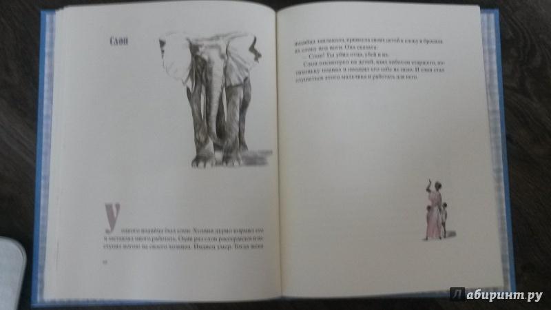 Иллюстрация 33 из 100 для Косточка - Лев Толстой | Лабиринт - книги. Источник: mara79-08