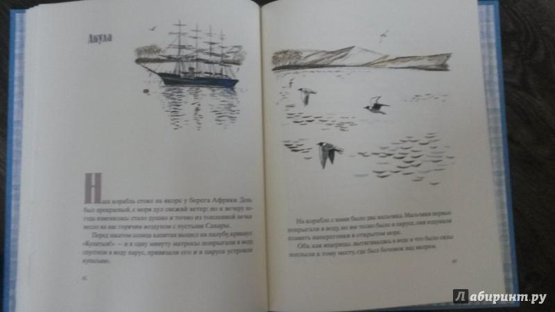 Иллюстрация 34 из 100 для Косточка - Лев Толстой | Лабиринт - книги. Источник: mara79-08