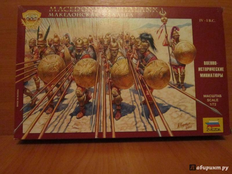 Иллюстрация 1 из 22 для Македонская фаланга  IV-II вв. до н.э. (8019) | Лабиринт - игрушки. Источник: Ермакова Юлия