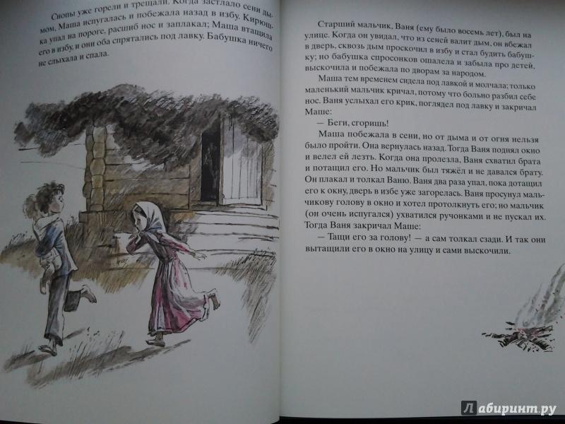 Иллюстрация 46 из 100 для Косточка - Лев Толстой | Лабиринт - книги. Источник: Olga