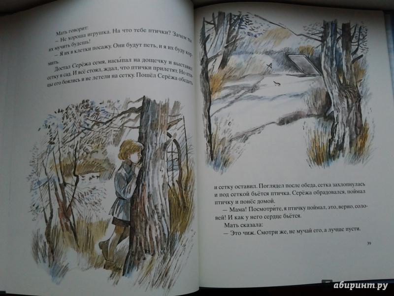 Иллюстрация 51 из 100 для Косточка - Лев Толстой   Лабиринт - книги. Источник: Olga