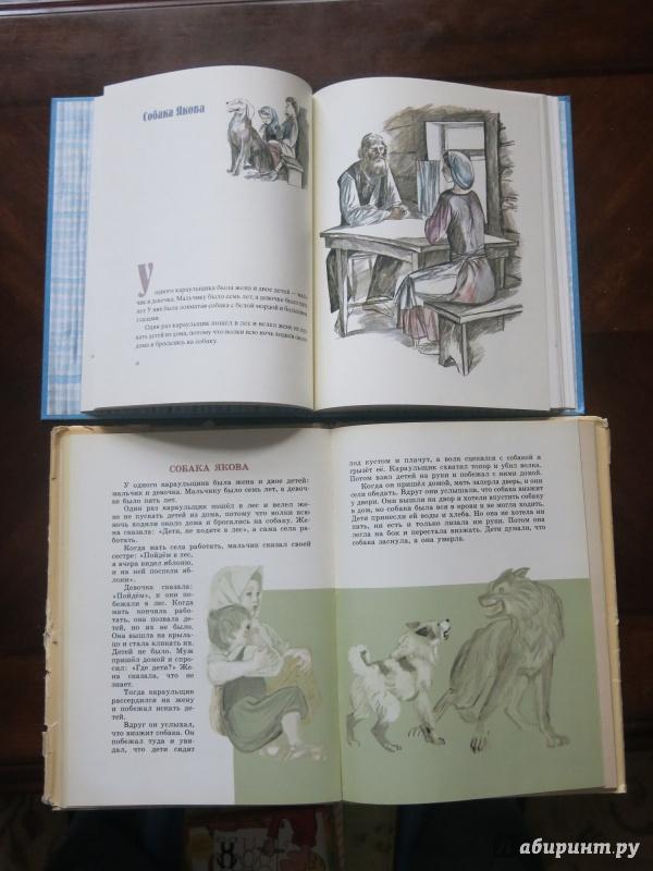 Иллюстрация 62 из 100 для Косточка - Лев Толстой | Лабиринт - книги. Источник: anschaffen